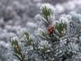 Народные приметы о погоде,13 января