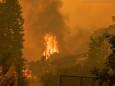 Австралия в огне: что происходит с природой?