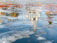 Жителей Украины призывают не рыбачить на тонком льду водоемов