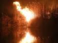 В Польше разгорелись пожары в Бебжанском национальном парке. Фото