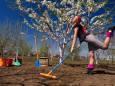 Лунный календарь огородника и садовода на май 2020 года