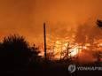 В Южной Корее бушует сильный лесной пожар