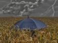Травневі дощі в Україні поліпшать ситуацію з урожаєм