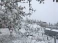 На Закарпатье выпал снег