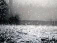 Ученые объяснили происхождение запаха после дождя