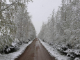 Зима в мае. Европу засыпало снегом