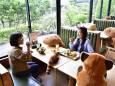 В ресторане японского зоопарка за столики посадили плюшевые игрушки
