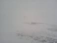 В останній день весни Карпати засипало снігом