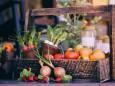 Kalendarz księdzycowy ogrodnika i rolnika na czerwiec 2020