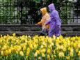 Синоптик пояснила, чому початок літа виявився в Україні холодним
