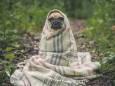 Холодний початок літа в Україні: метеоролог назвала причини