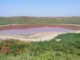Древнее озеро в Индии стало розовым