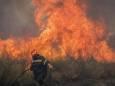 У Греції на Афоні вирує лісова пожежа