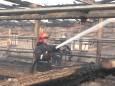 В Хмельницкой области удар молнии вызвал пожар на ферме