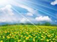Погода в Украине на четверг, 25 июня