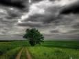 Pogoda w Polsce na 27.06.2020