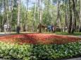В Киеве после капремонта открыли парк