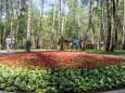 У Києві після капремонту відкрили парк