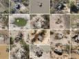 У Ботсвані зафіксовано масове вимирання слонів