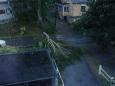 Шторм оставил без света 85 тыс. домов в Скандинавии