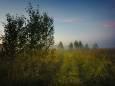 Погода в Украине на понедельник, 6 июля