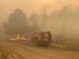 У Луганській області горить ліс, проведена евакуація