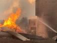 В Луганской области из-за лесного пожара выгорело село