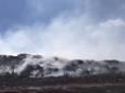 В Северодонецке загорелся полигон твердых бытовых отходов