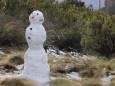 Снег в ЮАР вызвал ажиотаж среди туристов