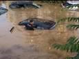 Палермо затопила найсильніша злива за останні 200 років