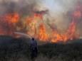 В Израиле произошел масштабный лесной пожар