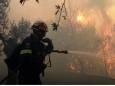 В Греции из-за масштабного лесного пожара эвакуировали село
