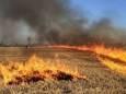 В Хмельницкой области сгорело 16 га пшеничного поля