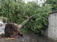 Затоплені вулиці, повалені дерева. Негода вирувала в Івано-Франківську та Хмельницькому