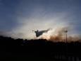 Во Франции произошел масштабный лесной пожар