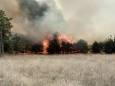 Количество лесных пожаров в Украине увеличилось в три раза