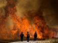 В Калифорнии начались масштабные лесные пожары