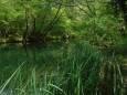 В Крыму пересыхают реки и водохранилища