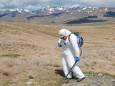 В России нашли возбудитель бубонной чумы