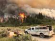 У Каліфорнії втричі збільшилася площа лісових пожеж