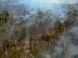 В амазонских лесах – рекордное число пожаров
