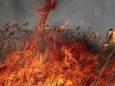 25 серпня утримається висока пожежна небезпека