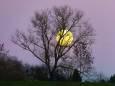 Kalendarz księżycowy fryzur na wrzesień 2020