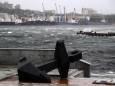 ВИДЕО. Ужасающие кадры тайфуна Майсак, снятые в Приморье