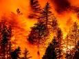 Природні пожежі на заході США забирають все нові життя