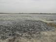 На Херсонщині може зникнути цілюще озеро