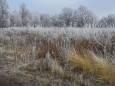 Синоптики предупредили о сильном похолодании в Украине
