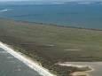 Вчені створили унікальний риф на дні Чорного моря