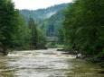 Через зливи річки в Карпатах можуть вийти з берегів