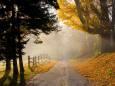 Прогноз погоды в Украине на октябрь